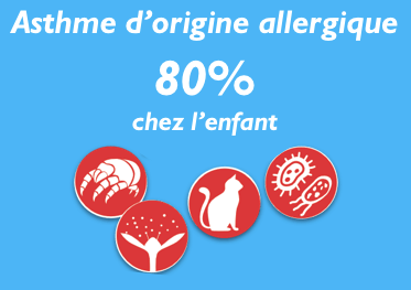 La Rhinite allergique